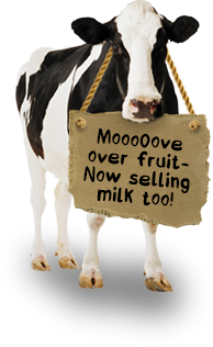 Mooove over fruit. Now selling milk too.
